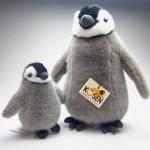 koesen皇帝ペンギンの子