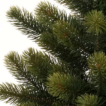 tree2010_1